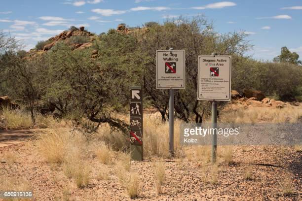 Dingo Signs