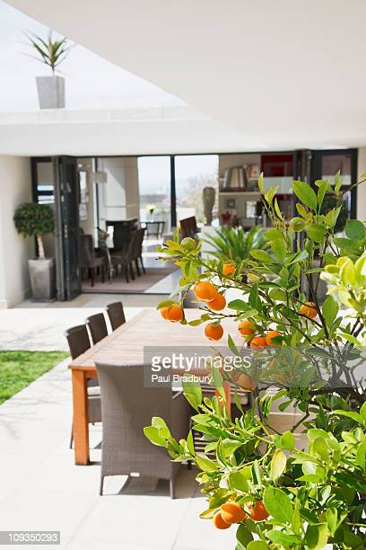 dining area on modern patio - fruit tree stock pictures, royalty-free photos & images