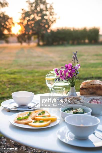 Dinner at Sunset, Loire Valley