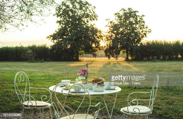 dinner table at sunset close up, loire valley - frankreich stock-fotos und bilder