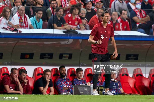 Dino Toppmoller, Assistant Coach of Bayern München reacts during the UEFA Champions League group E match between SL Benfica and Bayern München at...