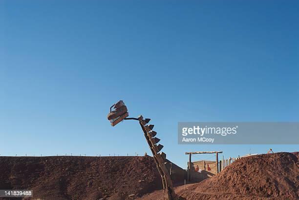 Dinosaur head at paleontology excavation in Patagonia, Neuquen, Argentina