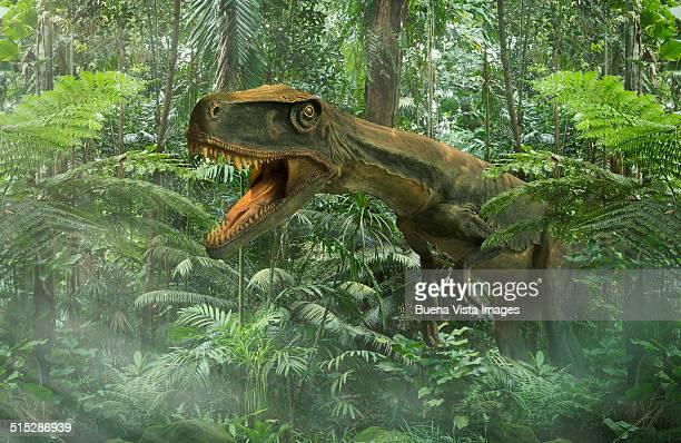 Dinosaur in a rain forest