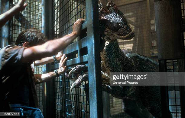 A dinosaur is forced into a cage in a scene from the film 'Jurassic Park III' 2001