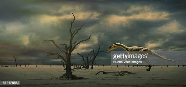 dinosaur (eodromaeus) running in a desert - extinct stock pictures, royalty-free photos & images