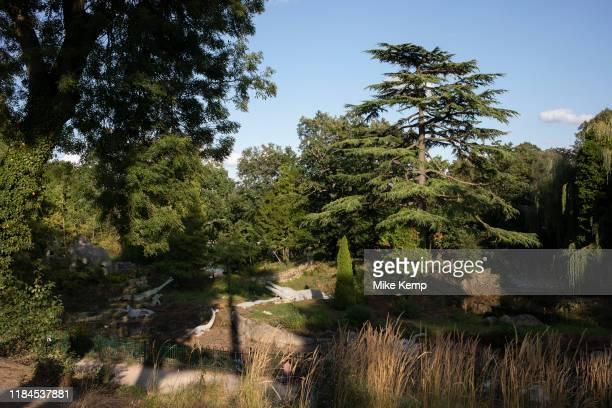 Dinosaur sculptures in Crystal Palace in London United Kingdom The Crystal Palace Dinosaurs are a series of sculptures of dinosaurs and other extinct...