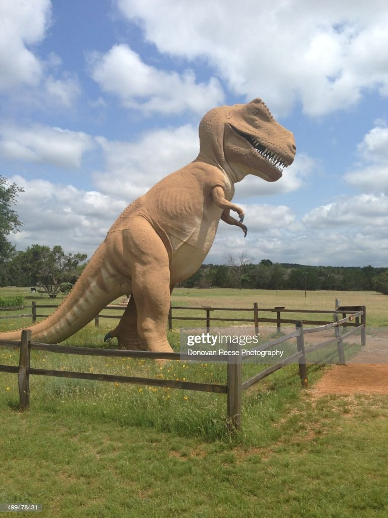 Dinosaur State Park  Glen Rose Texas News Photo - Getty Images