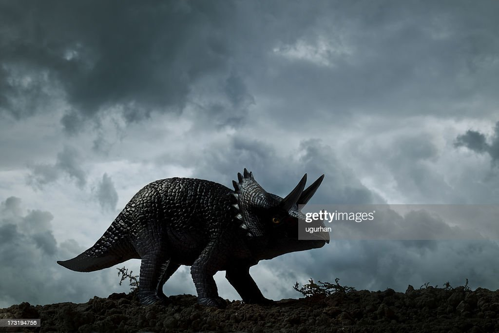 dinosaurier triceratops stockfoto  getty images