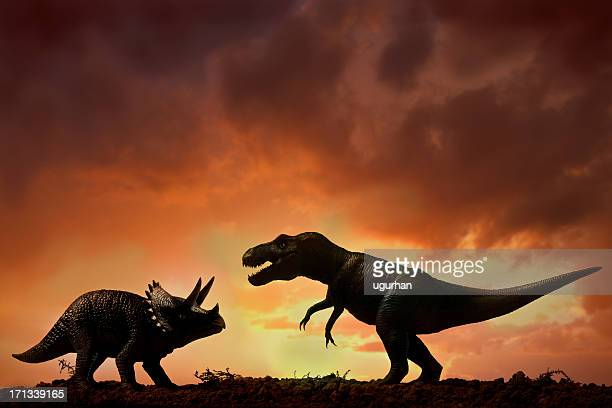 dinosaurs - tyrannosaurus rex stock photos and pictures