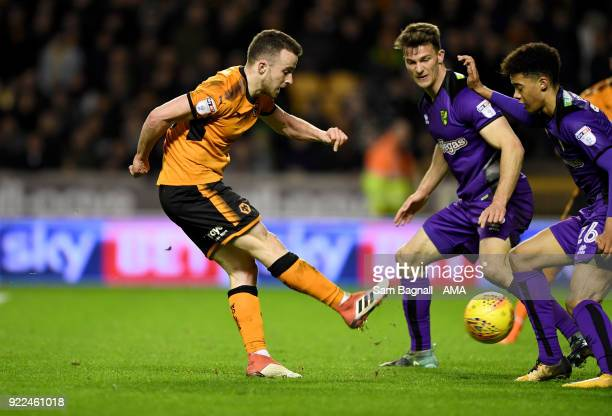 Diogo Jota of Wolverhampton Wanderers during the Sky Bet Championship match between Wolverhampton Wanderers and Norwich City at Molineux on February...