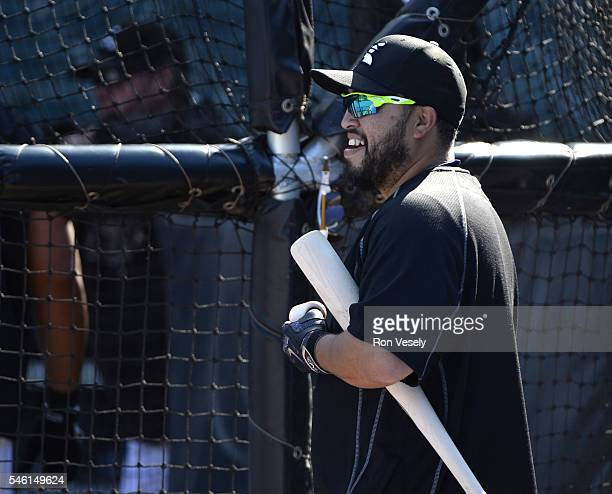 Dioner Navarro of the Chicago White Sox looks on during batting practice prior to the game against the Minnesota Twins on June 29 2016 at US Cellular...