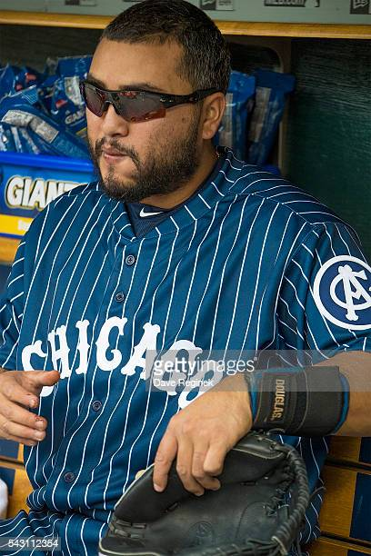 Dioner Navarro of the Chicago White Sox sits in the dugout prior to a MLB game against the Detroit Tigers at Comerica Park on June 4 2016 in Detroit...