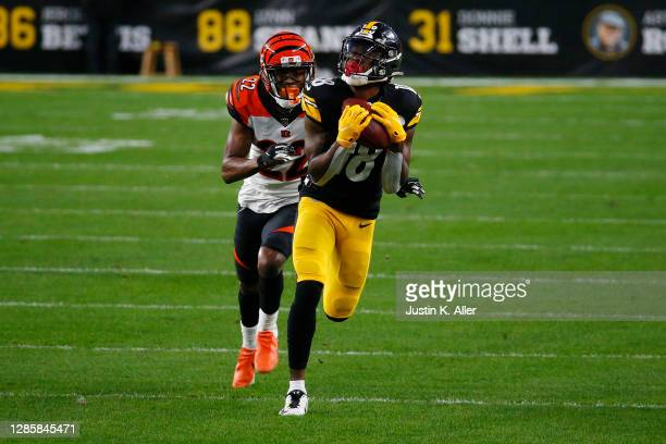 Diontae Johnson of the Pittsburgh Steelers makes a catch in front of William Jackson of the Cincinnati Bengals during their NFL game at Heinz Field...