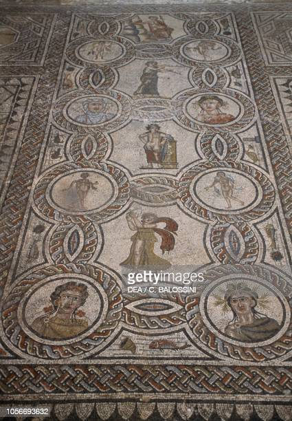 Dionysus and the Four Seasons allegory, mosaic from the House of Dionysus and the Four Seasons, Roman city of Volubilis , Morocco. Roman...