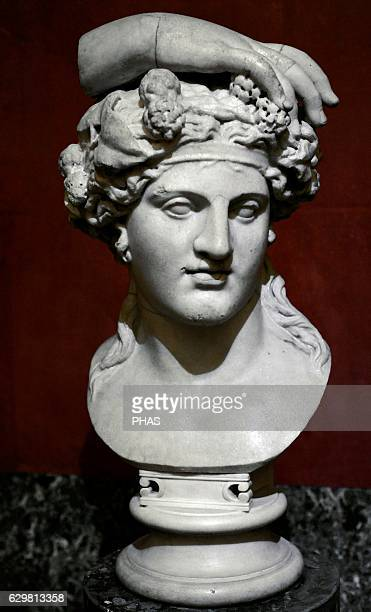 Dionysus god of wine Roman work after the Greek models of the mid4th century BC Bust Marble The State Hermitage Museum Saint Petersburg Russia