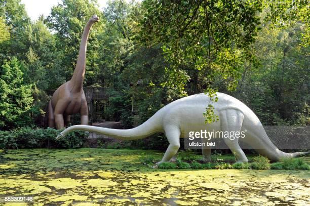 Diplodocus ein bis 30 m langer Dinosaurier dahinter Brachiosaurus das groesste bekannte Landwirbeltier beide hauptsaechlich Pflanzenfresser lebten in...