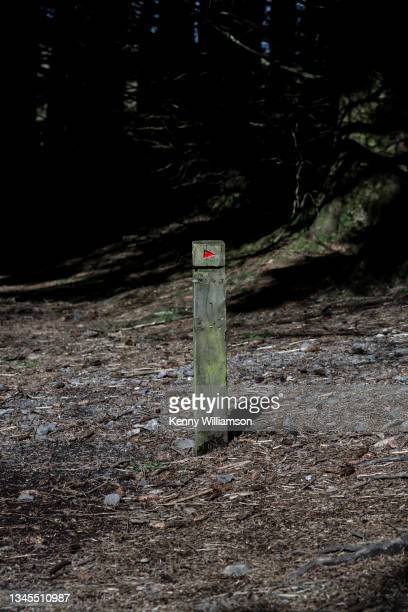 direction sign - national wildlife reserve stock pictures, royalty-free photos & images
