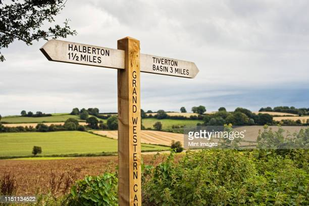 directional signpost in the country - devon stock pictures, royalty-free photos & images