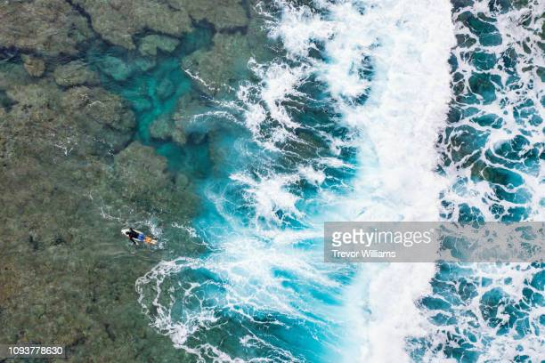 directly above of a mature man on a surfboard paddling past crashing waves in the ocean - paddling stock pictures, royalty-free photos & images