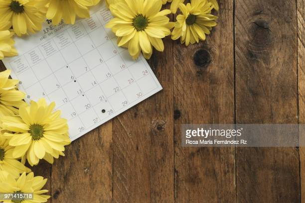 Directly above of calendar sheet and yellow daisies on old wooden background with copy space.