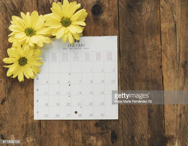 Directly above of calendar sheet and yellow daisies on rustic wooden background with copy space.