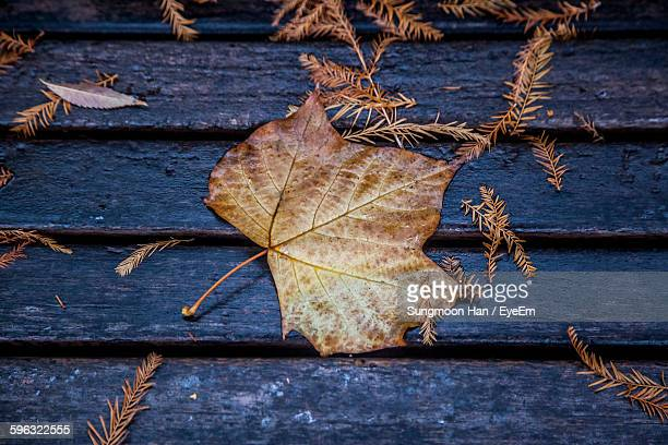 Directly Above Of Fallen Leaves On Bench In Park During Autumn