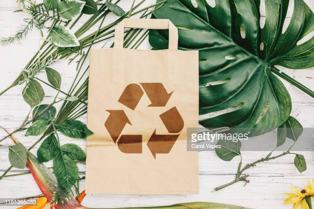 directly above recycled paper bag and green leaves - recycling stock pictures, royalty-free photos & images