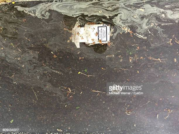 directly above shot of abandoned cigarette pack in water - cigarette packet stock pictures, royalty-free photos & images