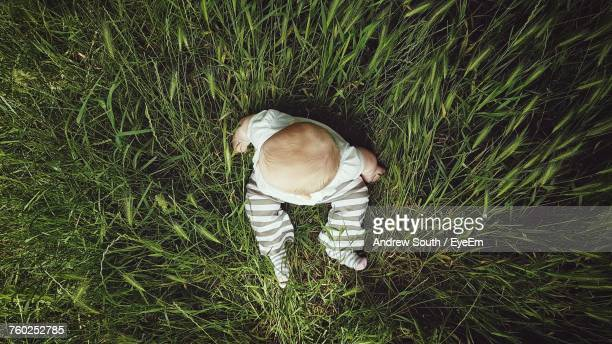 Directly Above Shot Of Baby Boy Sitting On Grassy Field At Brockwell Park
