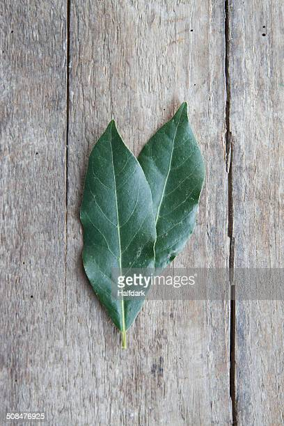 Directly above shot of bay leaves on wooden table