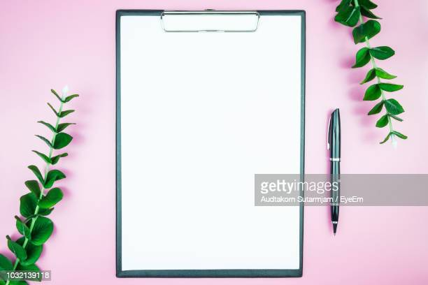 directly above shot of blank paper amidst plants on pink background - clipboard stock pictures, royalty-free photos & images