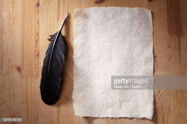 directly above shot of blank paper with feather on wooden table - quill pen stock photos and pictures