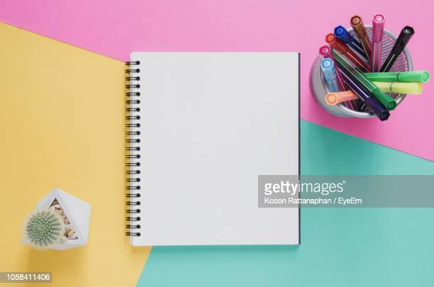 Directly Above Shot Of Book And Pens With Cactus On Colored Background