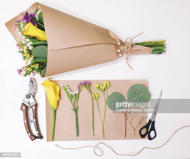 directly above shot of bouquet with work tools on white background - eingewickelt stock-fotos und bilder