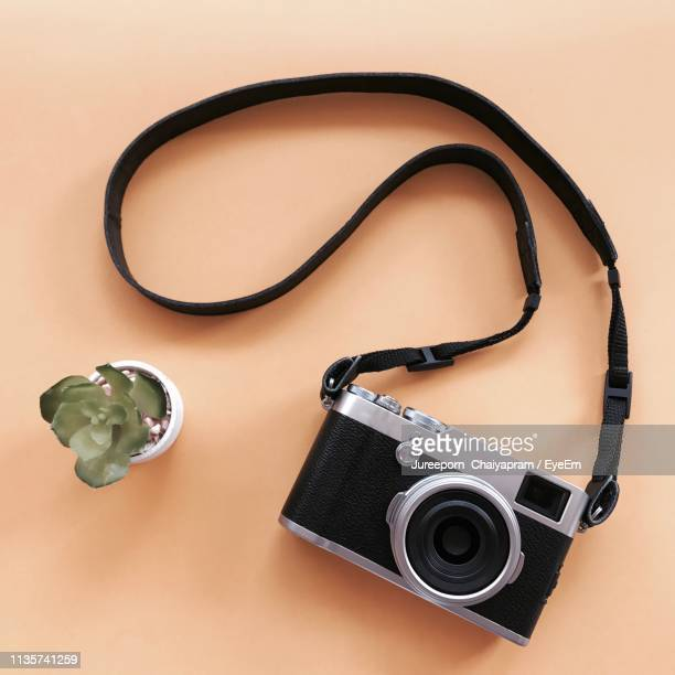 directly above shot of camera and potted plant on brown background - strap stock pictures, royalty-free photos & images