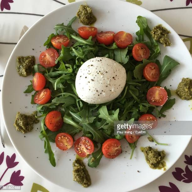 directly above shot of caprese salad served in plate - mozzarella stock photos and pictures