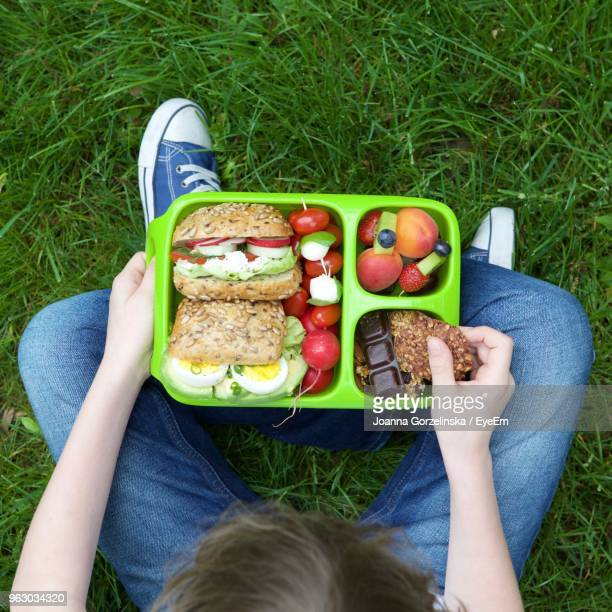 Directly Above Shot Of Child Holding Food In Plastic Plate On Grassy Field