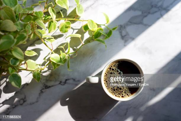 directly above shot of coffee in cup by plant - black coffee stock pictures, royalty-free photos & images