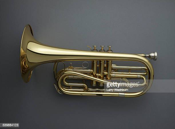 directly above shot of cornet against gray background - 楽器 ストックフォトと画像
