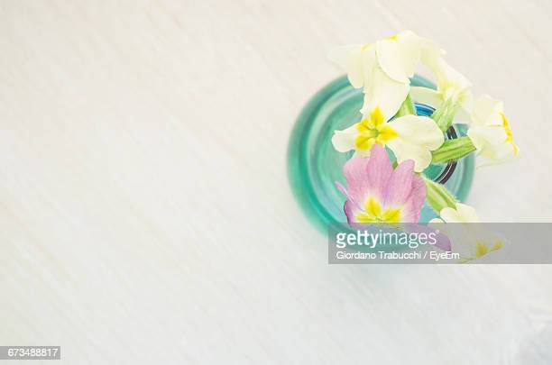 Directly Above Shot Of Cowslips Flowers In Vase On Table