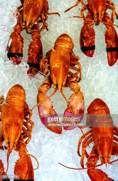 Directly Above Shot Of Dead Lobsters With Ice For Sale At Market