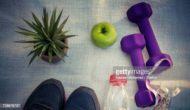 Directly Above Shot Of Dumbbells And Apples By Potted Plant And Shoes On Fabric