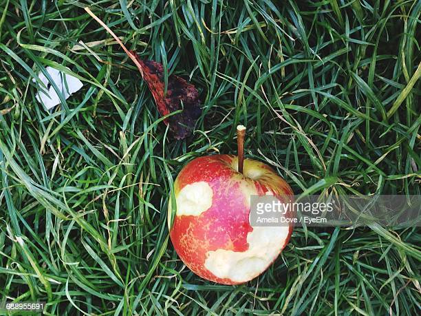 Directly Above Shot Of Eaten Apple On Grass