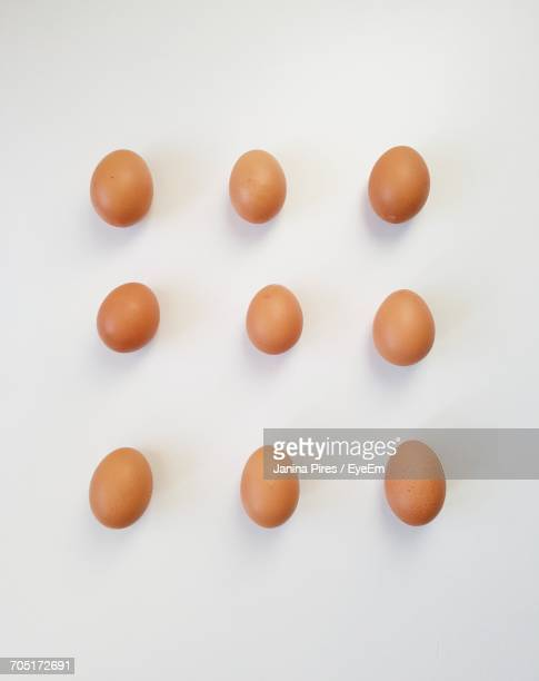 Directly Above Shot Of Eggs On White Background