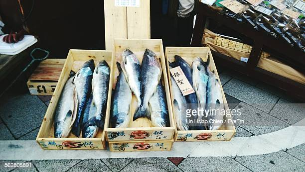 Directly Above Shot Of Fish For Sale At Market Stall