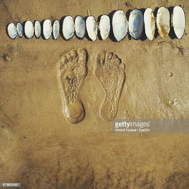 Directly Above Shot Of Footprints By Seashells Arranged At Beach