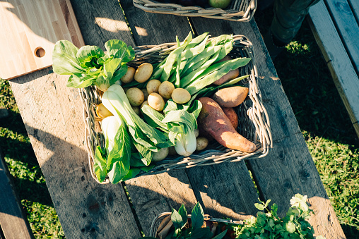 Directly above shot of fresh organic vegetables in basket on table at farmers market - gettyimageskorea