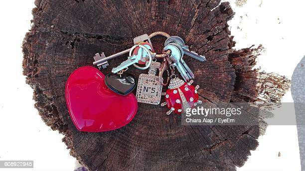 Directly Above Shot Of Key Ring On Tree Stump