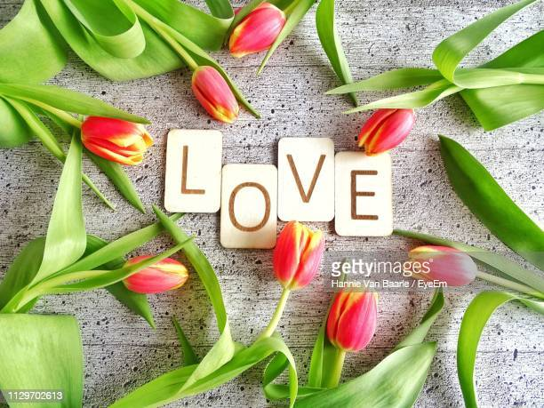 Directly Above Shot Of Love Text Amidst Tulips