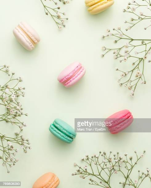 directly above shot of macaroons and plants on white background - macarons stock photos and pictures